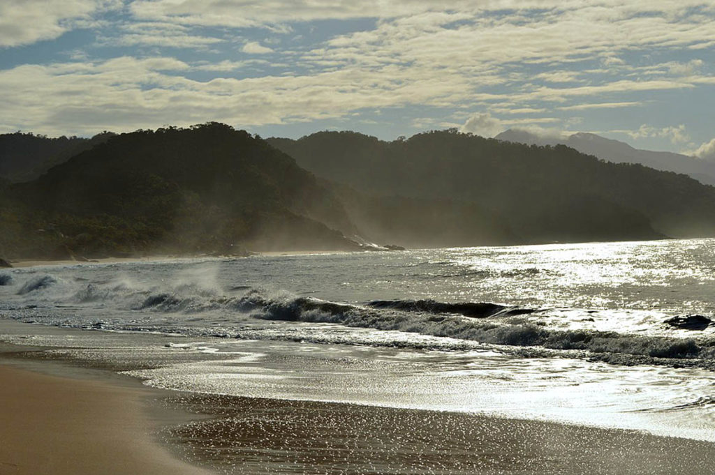 Trindade - praia do meio por LUCIANO FORONI