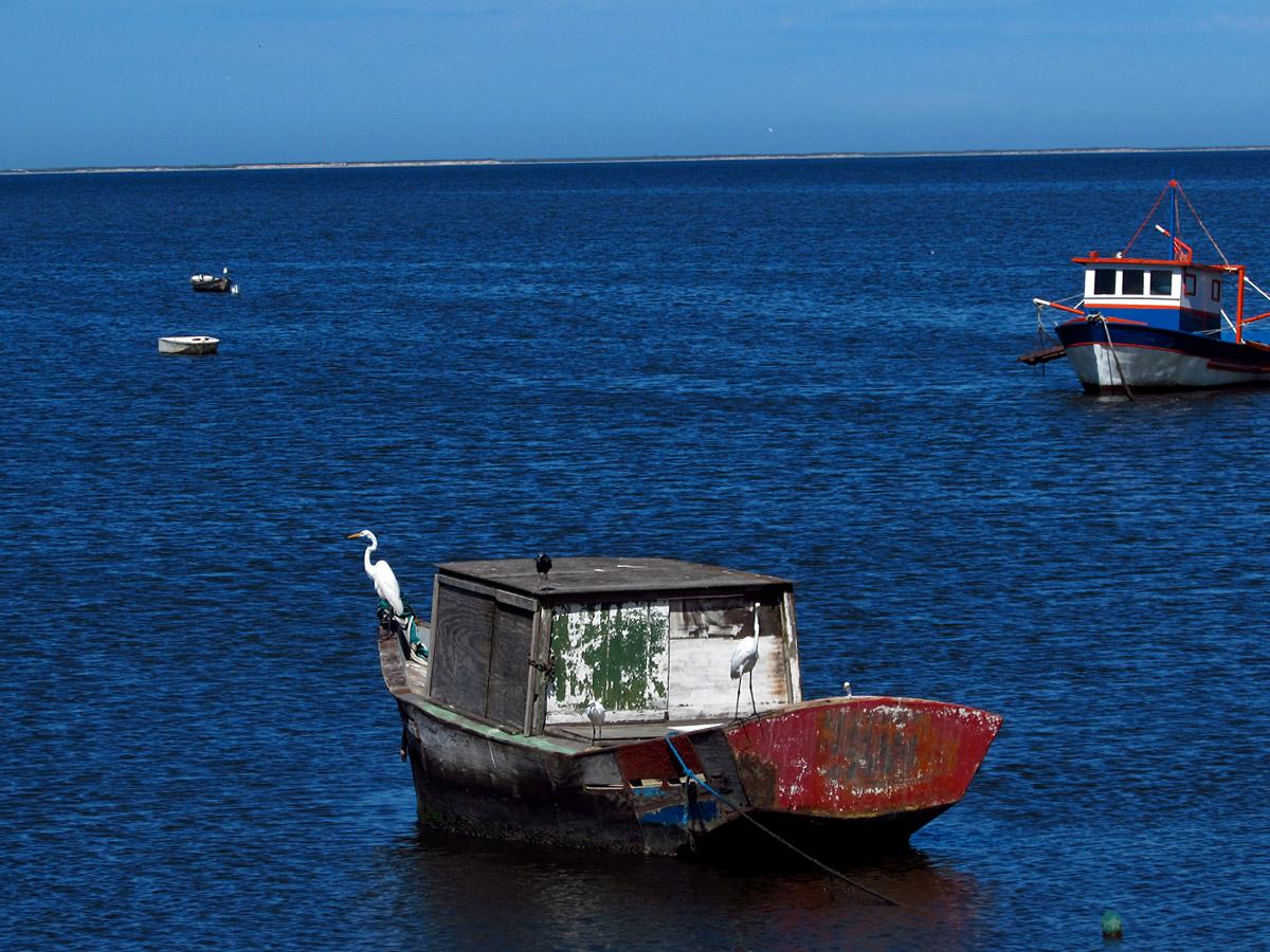 Praia de Sepetiba - Rio de Janeiro RJ