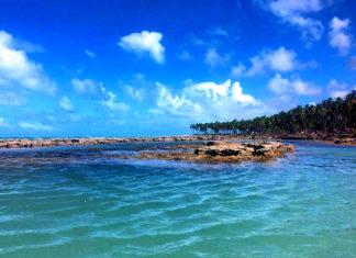 Praias de Tamandaré - Praia dos Carneiros - Luis Lins